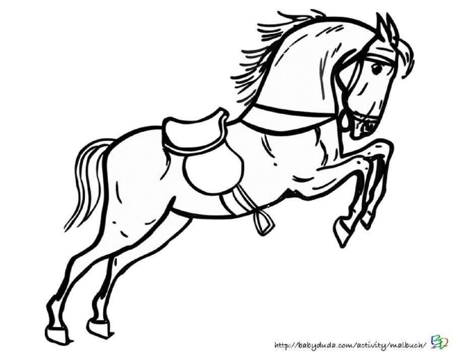 Pferdebilder Ausmalen Pferdeköpfe