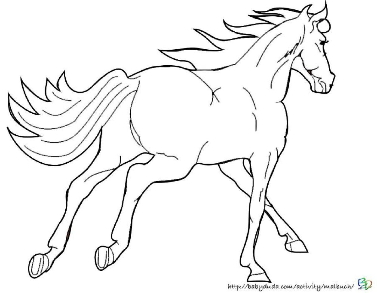Ausmalbilder Pferd Und Reiterin : Ausmalbilder Pferde Im Stall