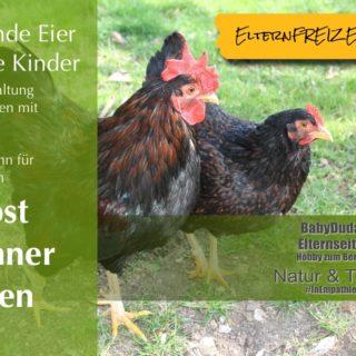 Eltern Kind Cafe K Ef Bf Bdln M Ef Bf Bdlheim