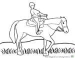 Kindgerechte Pferde Ausmalbilder Malvorlagen