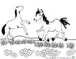 Pferde Ausmalbilder und Malvorlagen Pferde zum Ausmalen