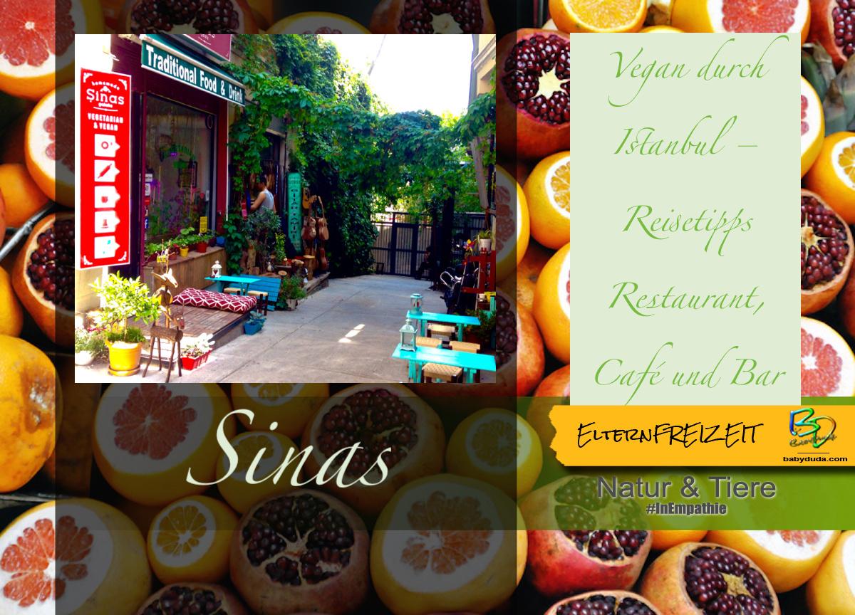 Reisebericht Istanbul vegan Essen am Galataturm - Sinas