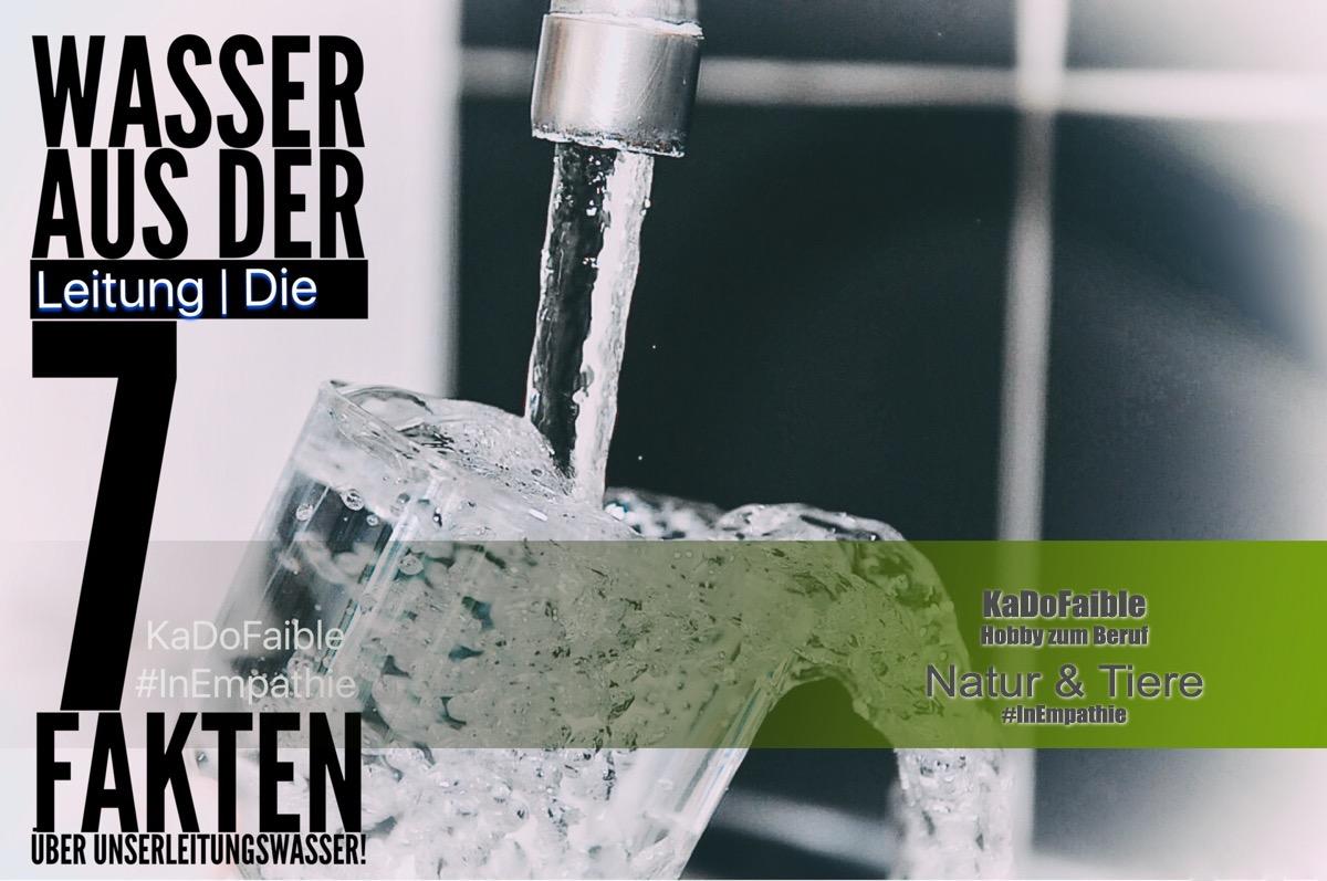 7 fakten ber das trinkwasser aus der leitung. Black Bedroom Furniture Sets. Home Design Ideas
